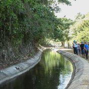 Canales de Riego en Isabela